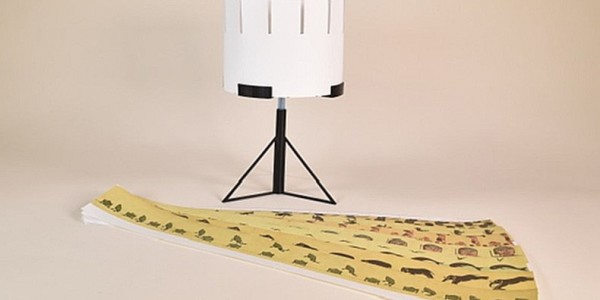 3D printed Zoetrope with strips